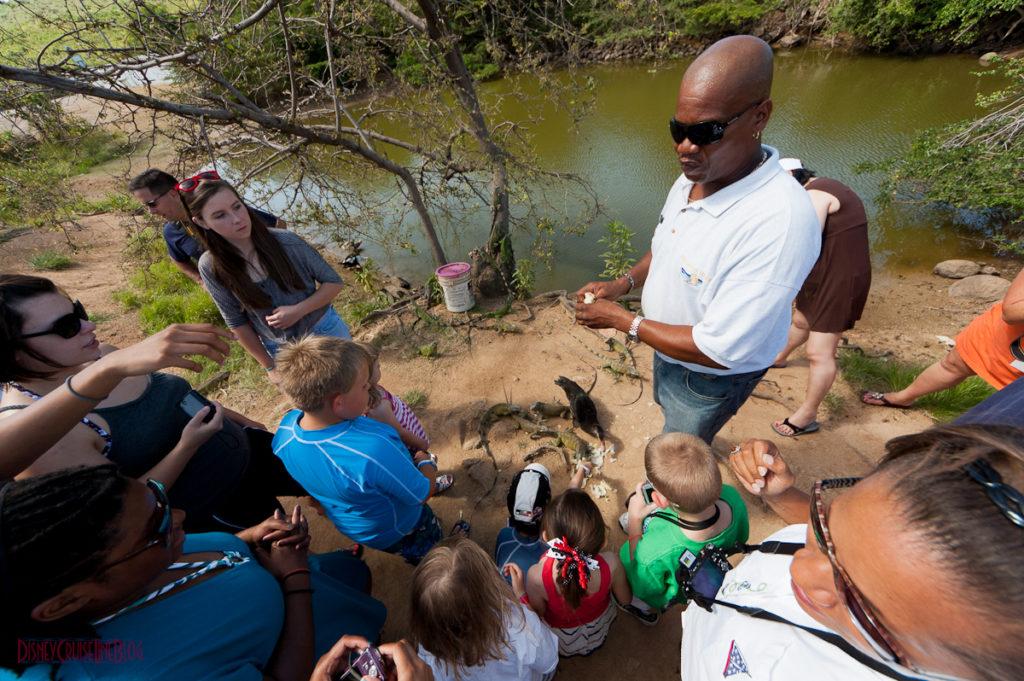 Bernard's Tours - Iguana Farm Feeding Frenzy