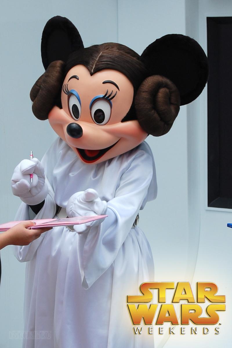 Walt disney world passholder mickey monitor spring 2014 - Princesse minnie ...