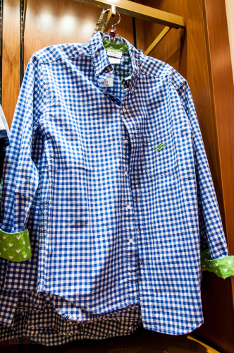 Disney Cruise Gingham Oxford