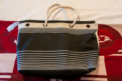 DCL Platinum Castaway Club 2014 Gift Tote Back