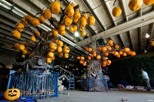 DCL Pumpkin Trees 2014
