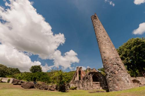 Wingfield Estate St. Kitts