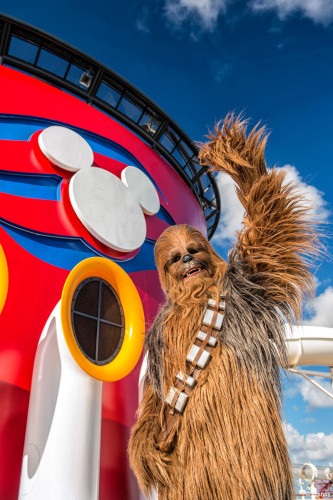 Star Wars Day At Sea Chewbacca