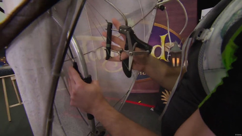 DCL Maximus Puppet Hand Controls Tangled The Musical