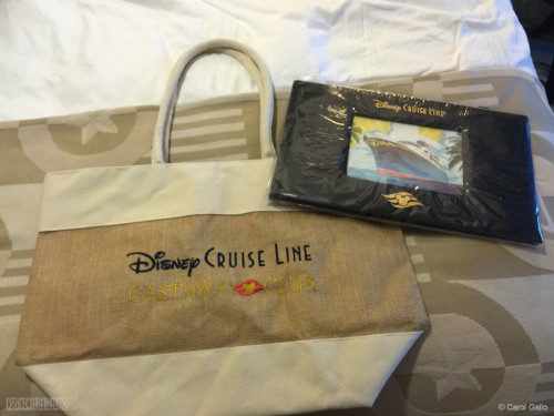 DCL Castaway Club Tote Bag Platinum Gift Late 2015