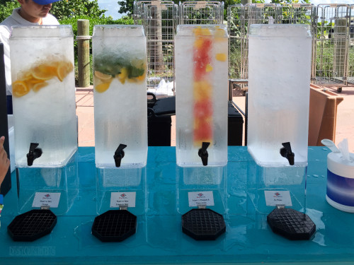 Castaway Cay Infused Ice Water