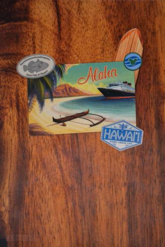Hawaii Aloha Menu Cover Wonder 2015
