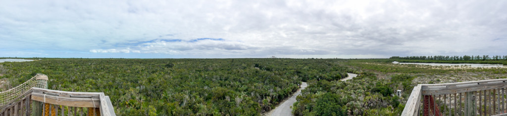 Castaway Cay Observation Tower Pano