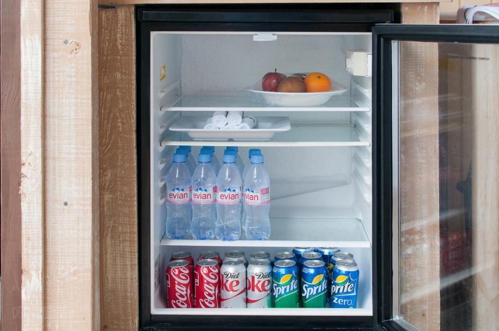 Castaway Cay Cabana 9 Refrigerator Soda Water Fruit