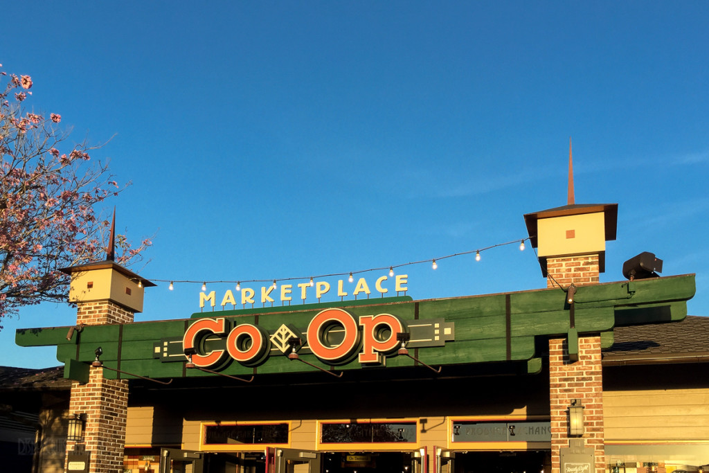 Disney Springs Marketplace Co Op