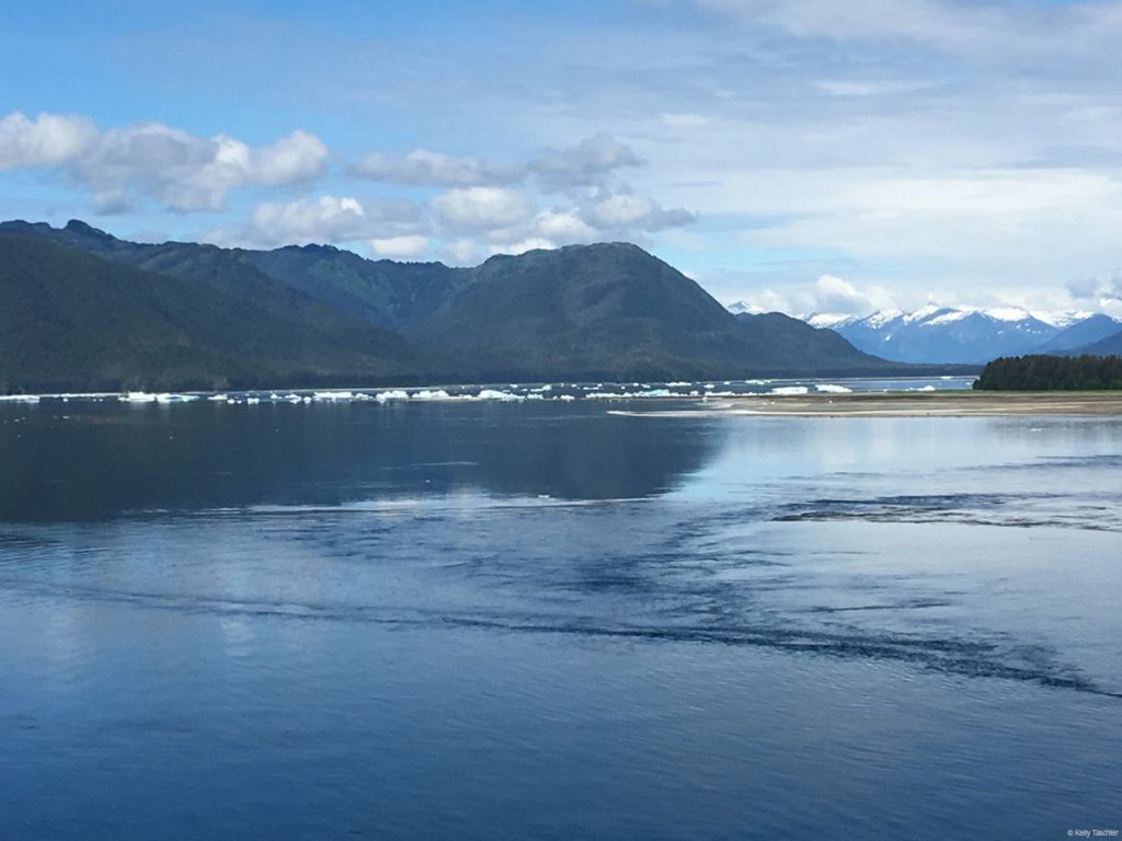 Ice Blocking Tracy Arm Fjord June 2016
