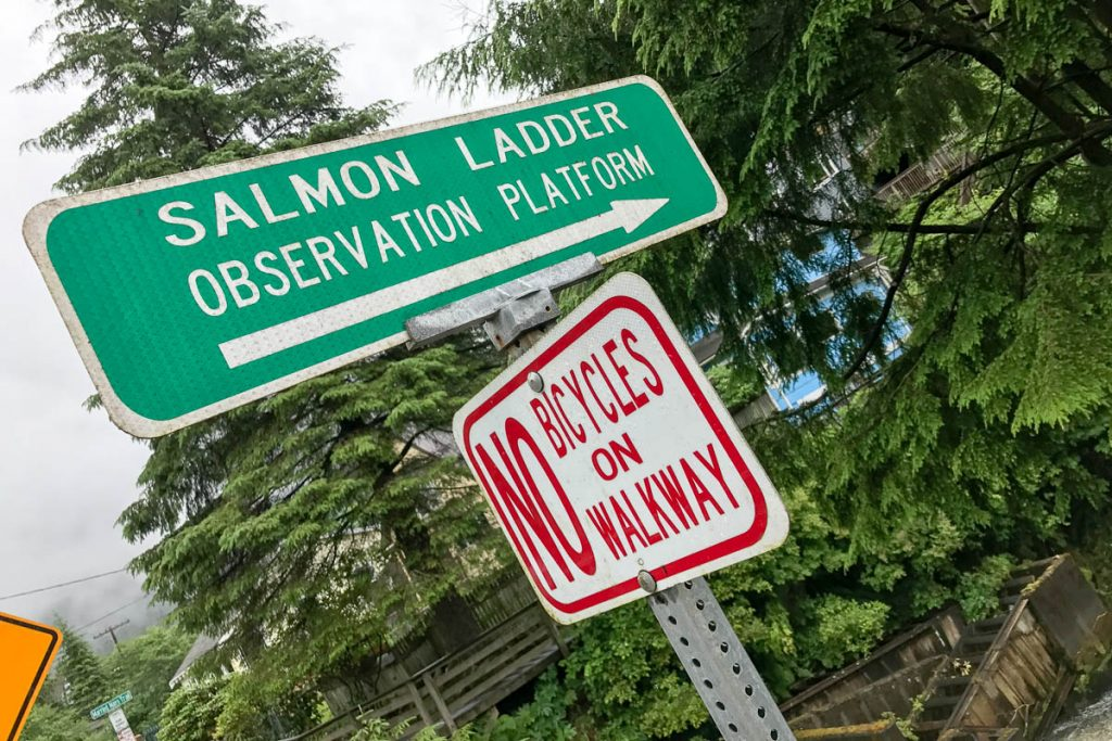 Salmon Ladder Observation Platform Sign