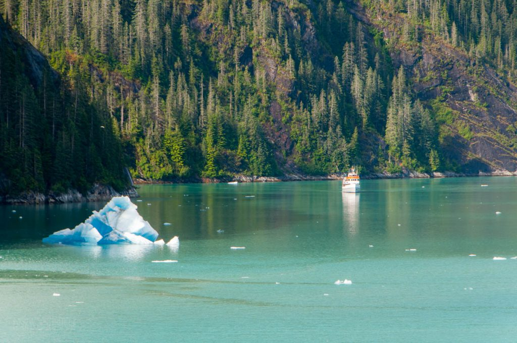Endicott Arm Iceberg Small Boat