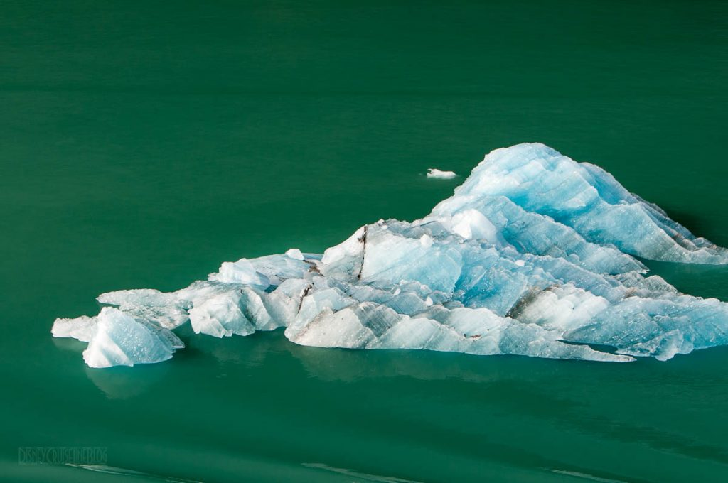 Endicott Arm Iceberg