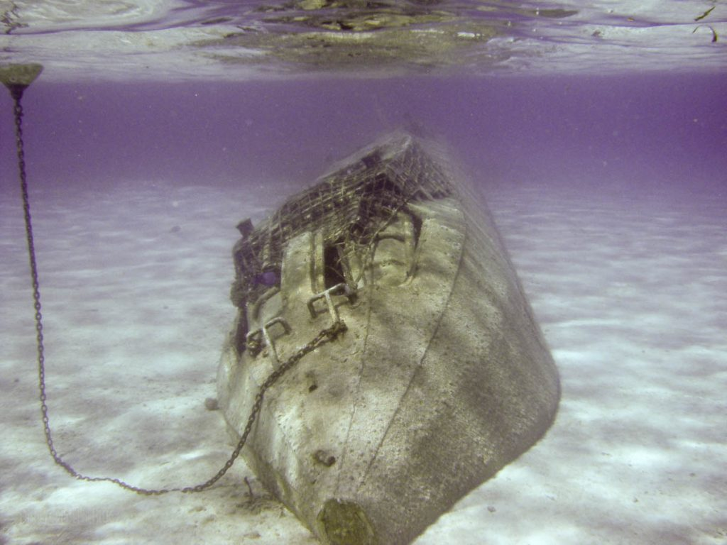 Castaway Snorkeling Lagoon Treasures Nautilus