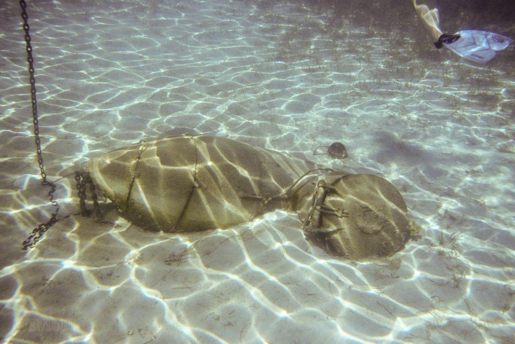 Castaway Snorkeling Lagoon Treasures Sub