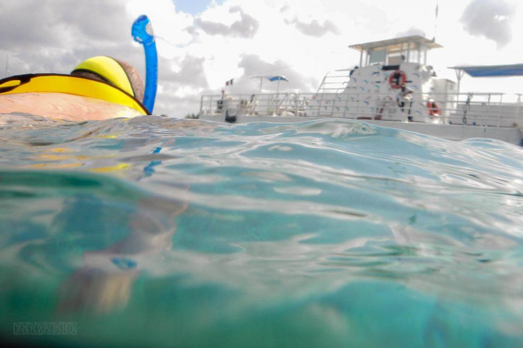 Fury Catamaran Snorkeling