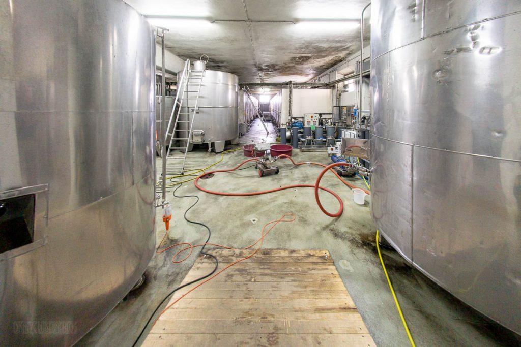 LV100 Torre A Cenaia Winery