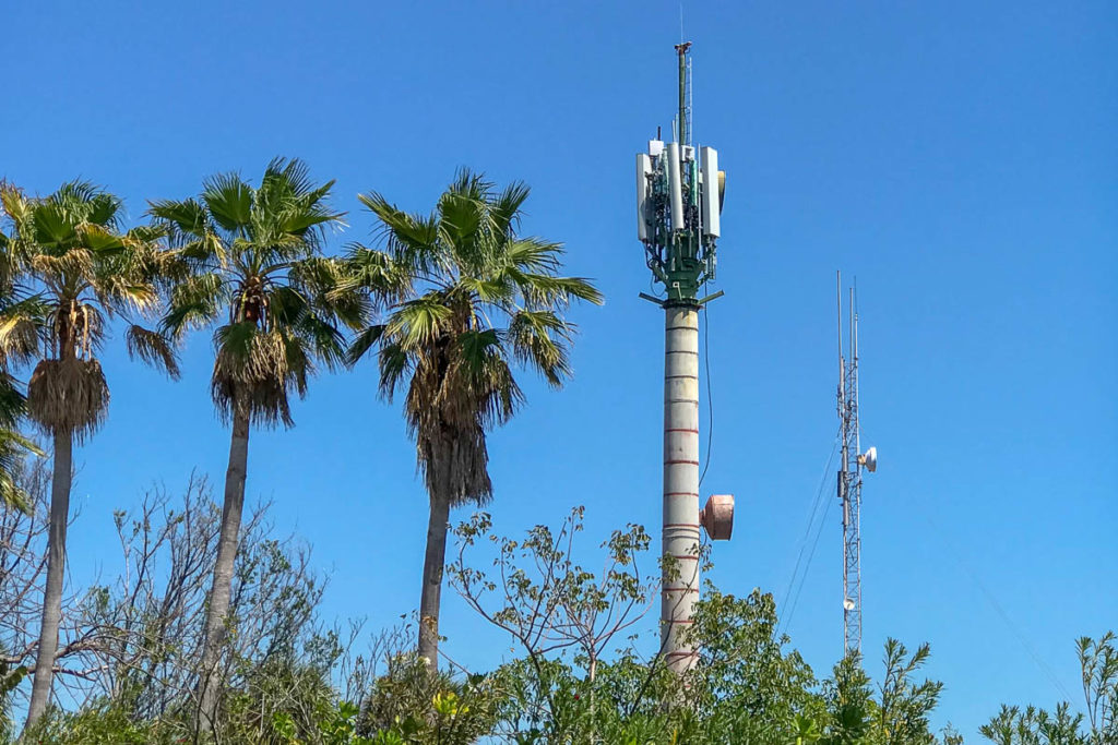 Castaway Cay No Longer Palm Tree Cell Tower