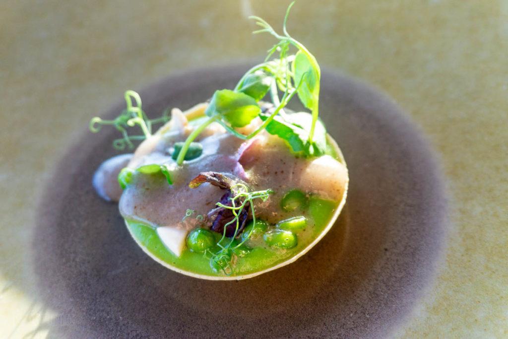 Fantasy Remy Dinner Peas