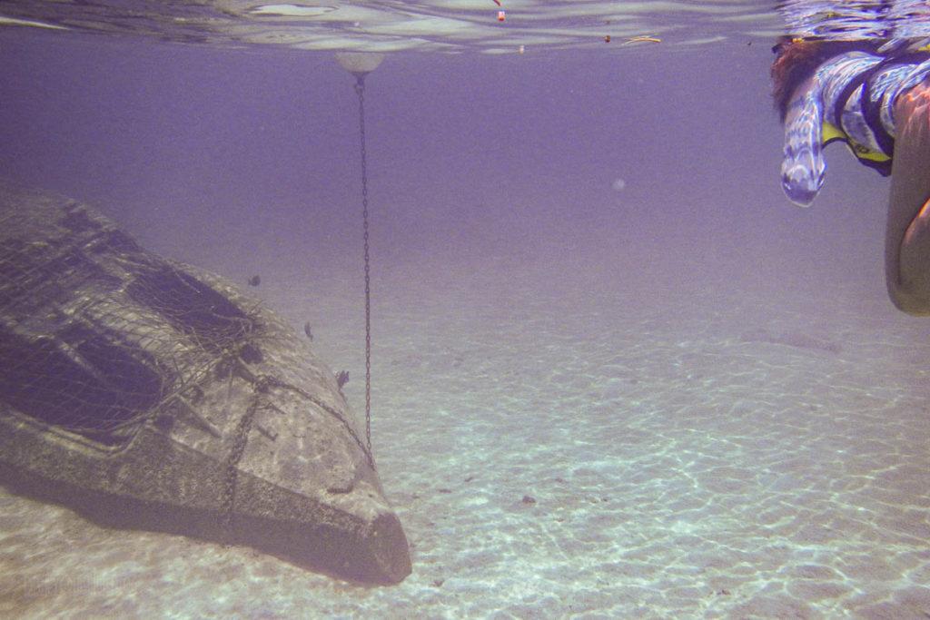 Castaway Cay Snorkeling Lagoon Nautilus