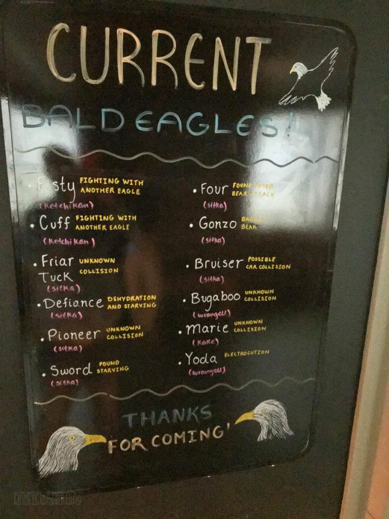 Sitka Alaska Raptor Center Bald Eagle Training Center