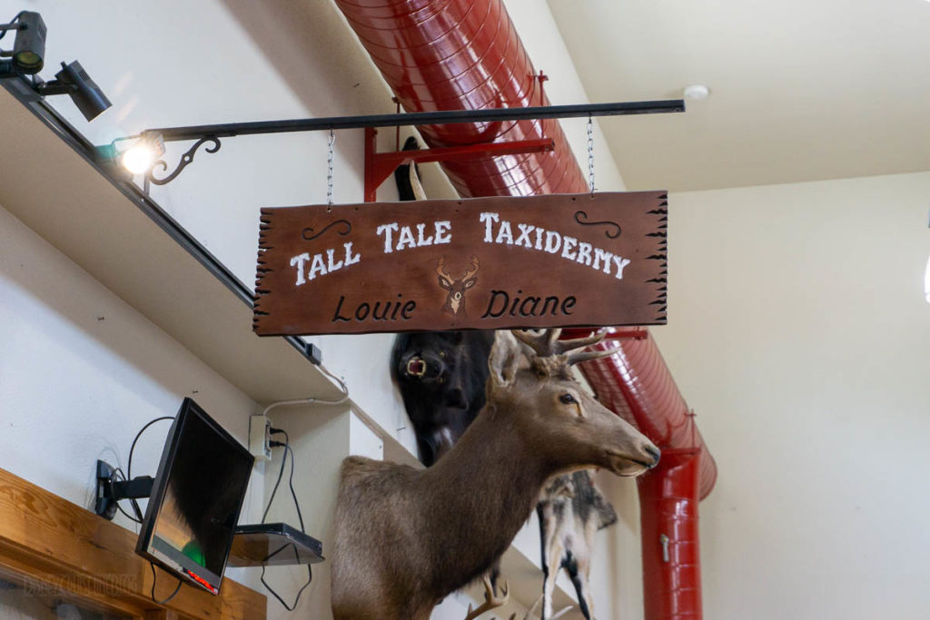 Tall Tale Taxidermy Ketchikan