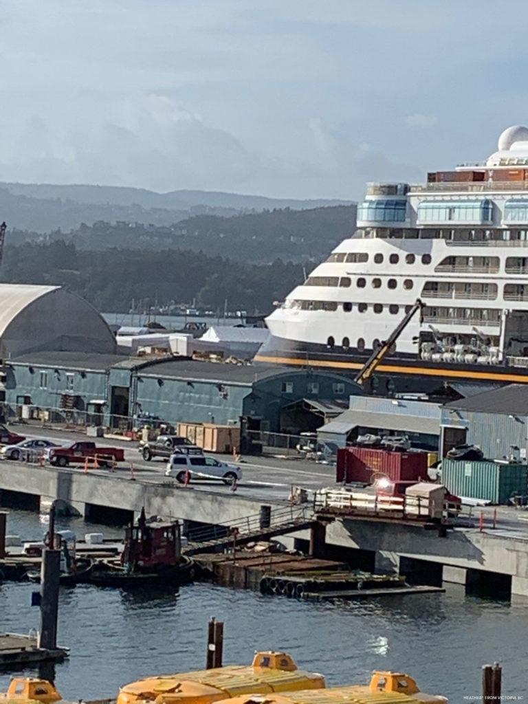 Disney Wonder 2019 Dry Dock Victoria 1