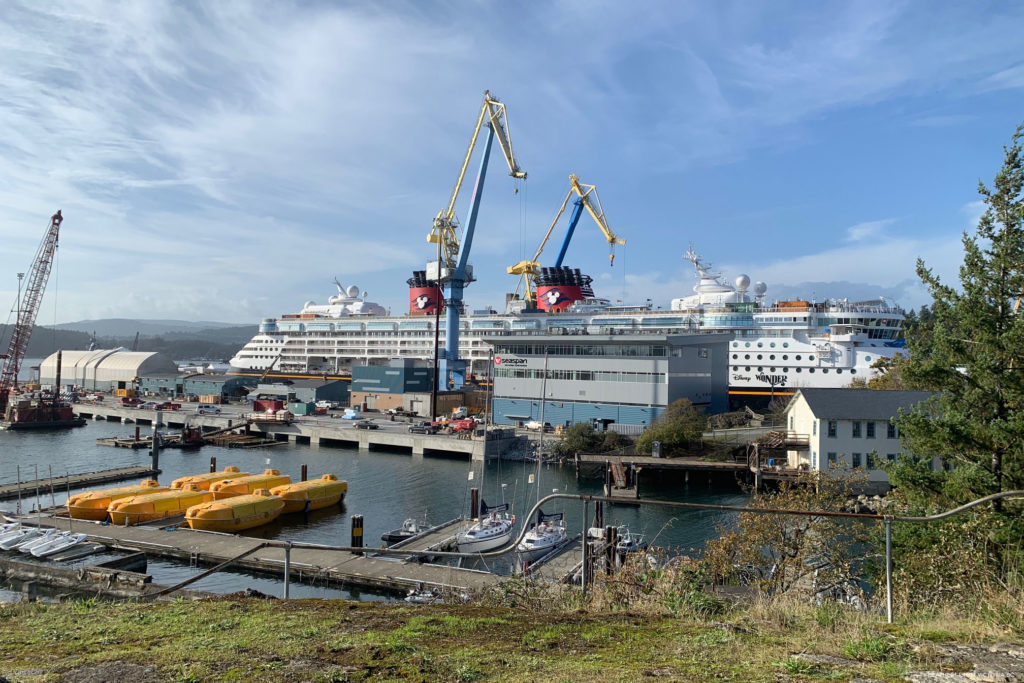 Disney Wonder 2019 Dry Dock Victoria 4