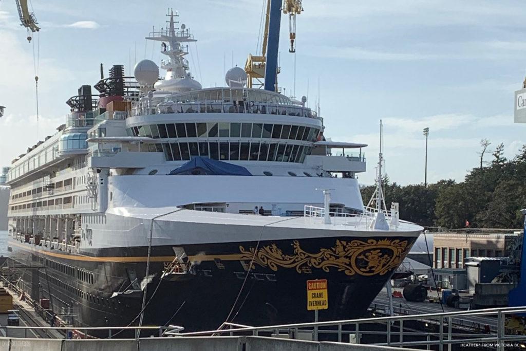 Disney Wonder 2019 Dry Dock Victoria 9