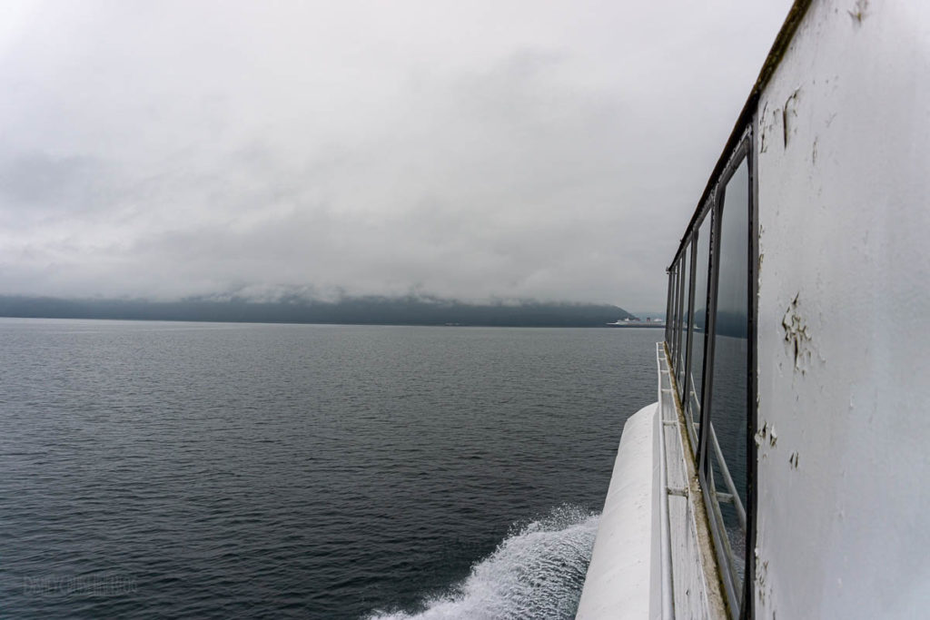 Icy Strait Point Whale Marine Mammals Cruise IS01 American Eagle