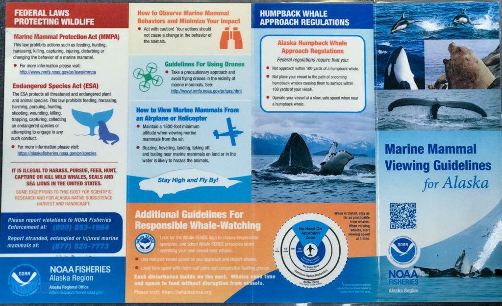 NOAA Fisheries Marine Mammal Viewing Guidelands Alaska 1