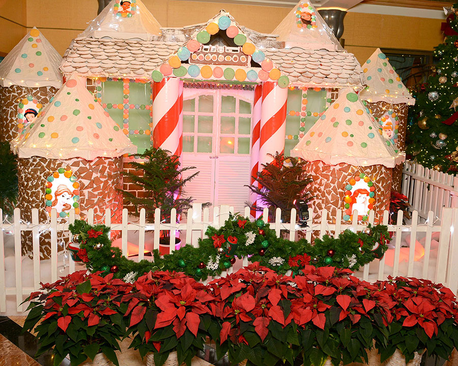 DCL Gingerbread Houses 2019 Wonder