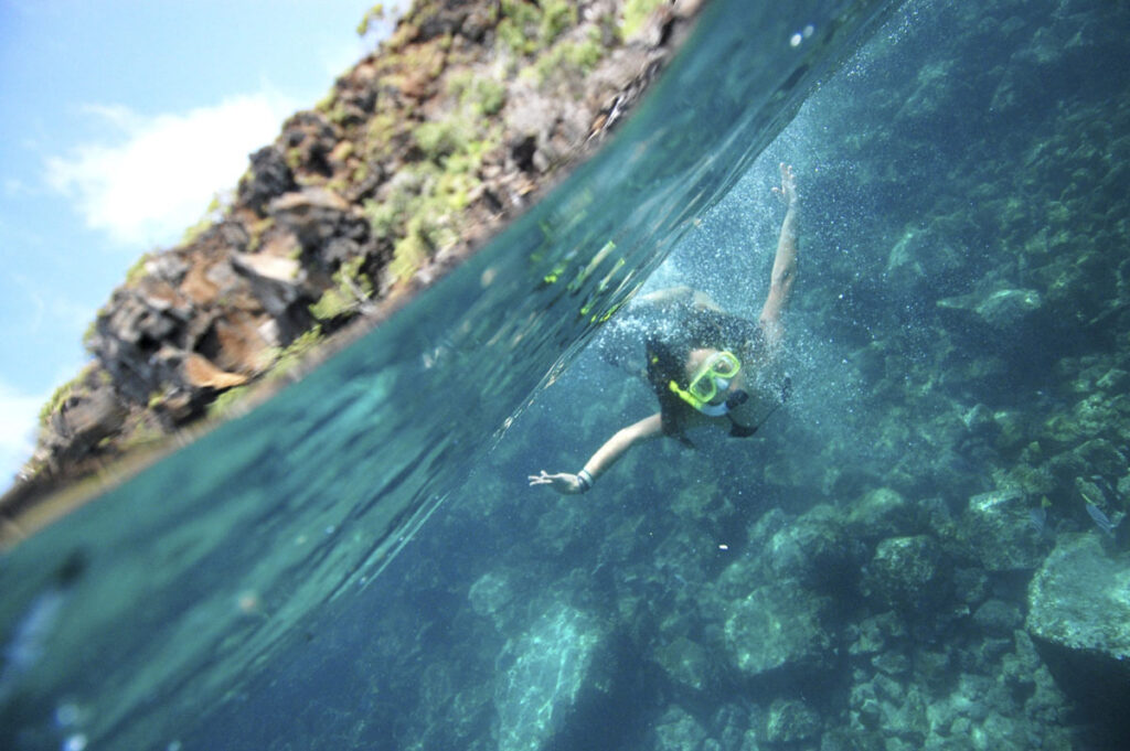 Adventures By Disney Expedition Cruises – Snorkeling In The Galapagos
