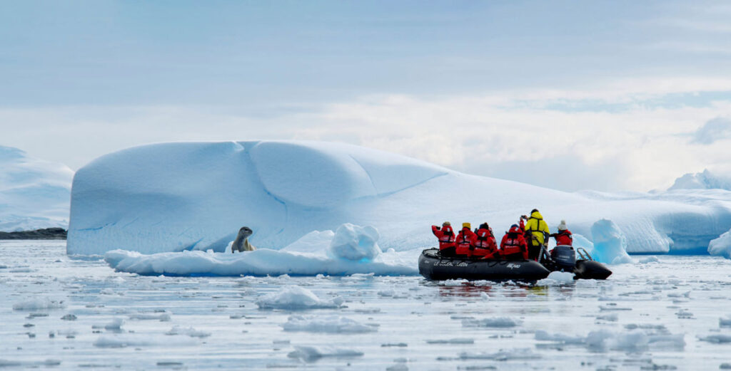Adventures By Disney Expedition Cruises – Wildlife Viewings In Antarctica