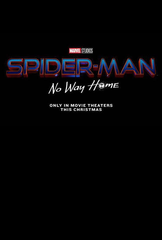 Spider Man No Way Home Movie Teaser Poster