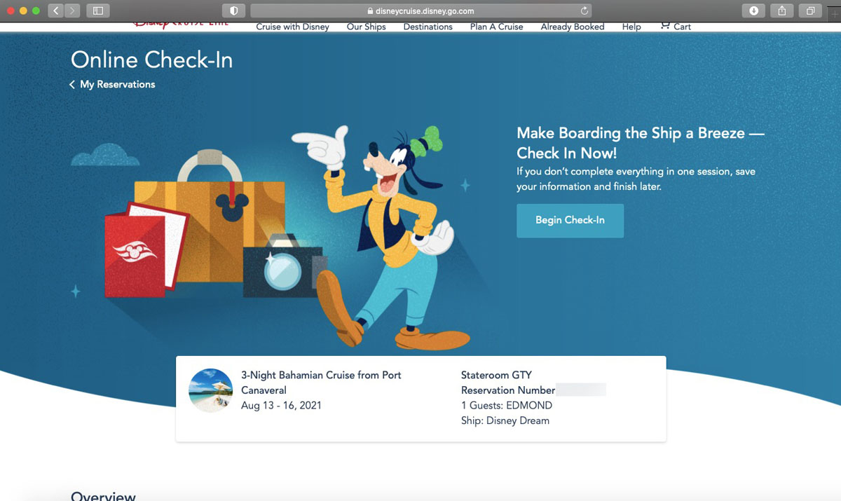 DCL Online Checkin 2021 1