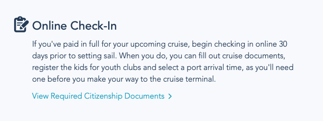 DCL Online Checkin 2021 12